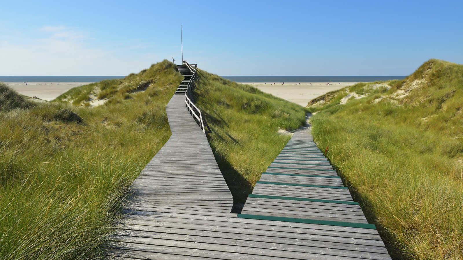 Forked wooden walkway, Schleswig-Holstein, Germany