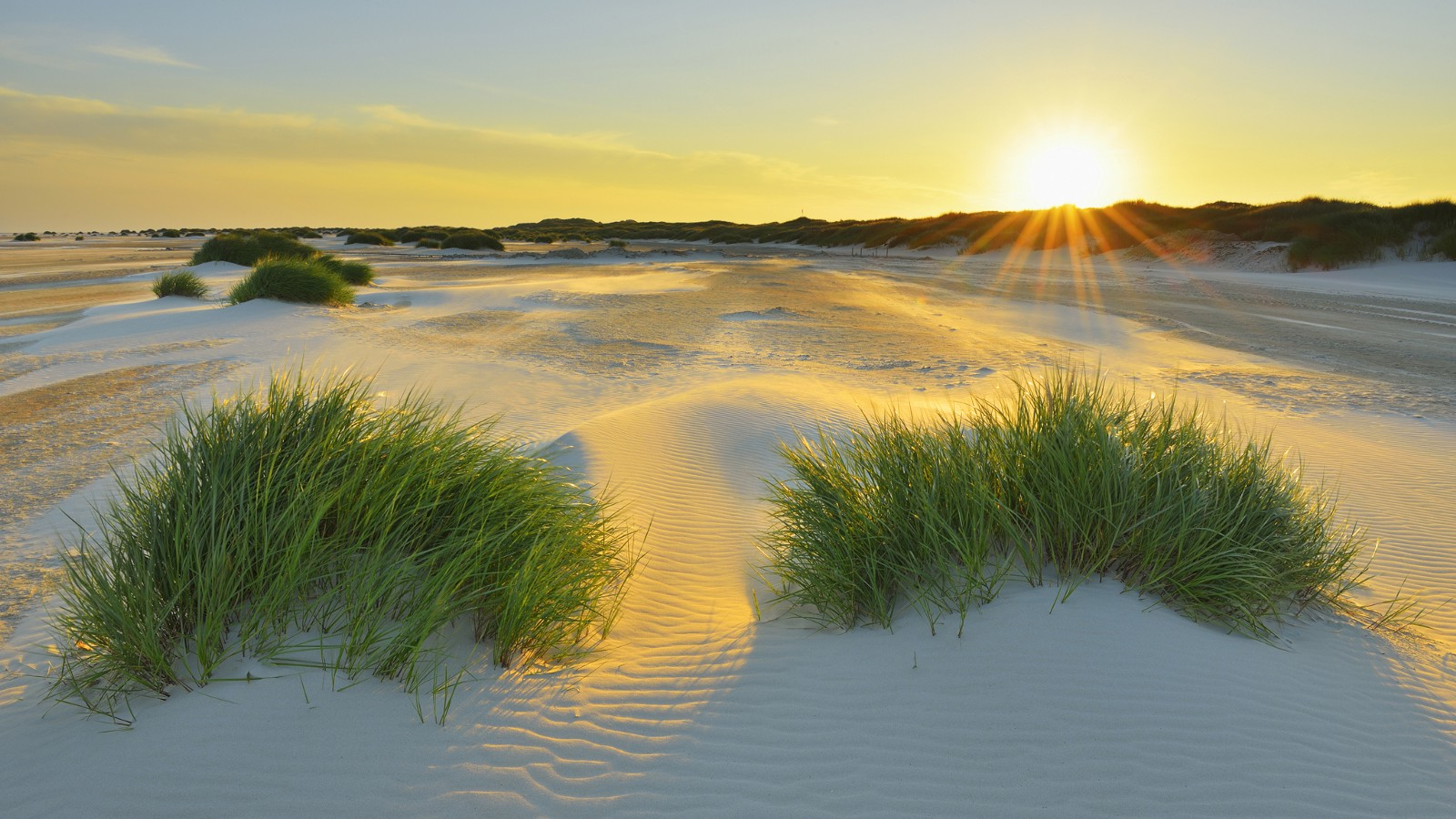 North Sea sandbank in Schleswig-Holstein, Germany