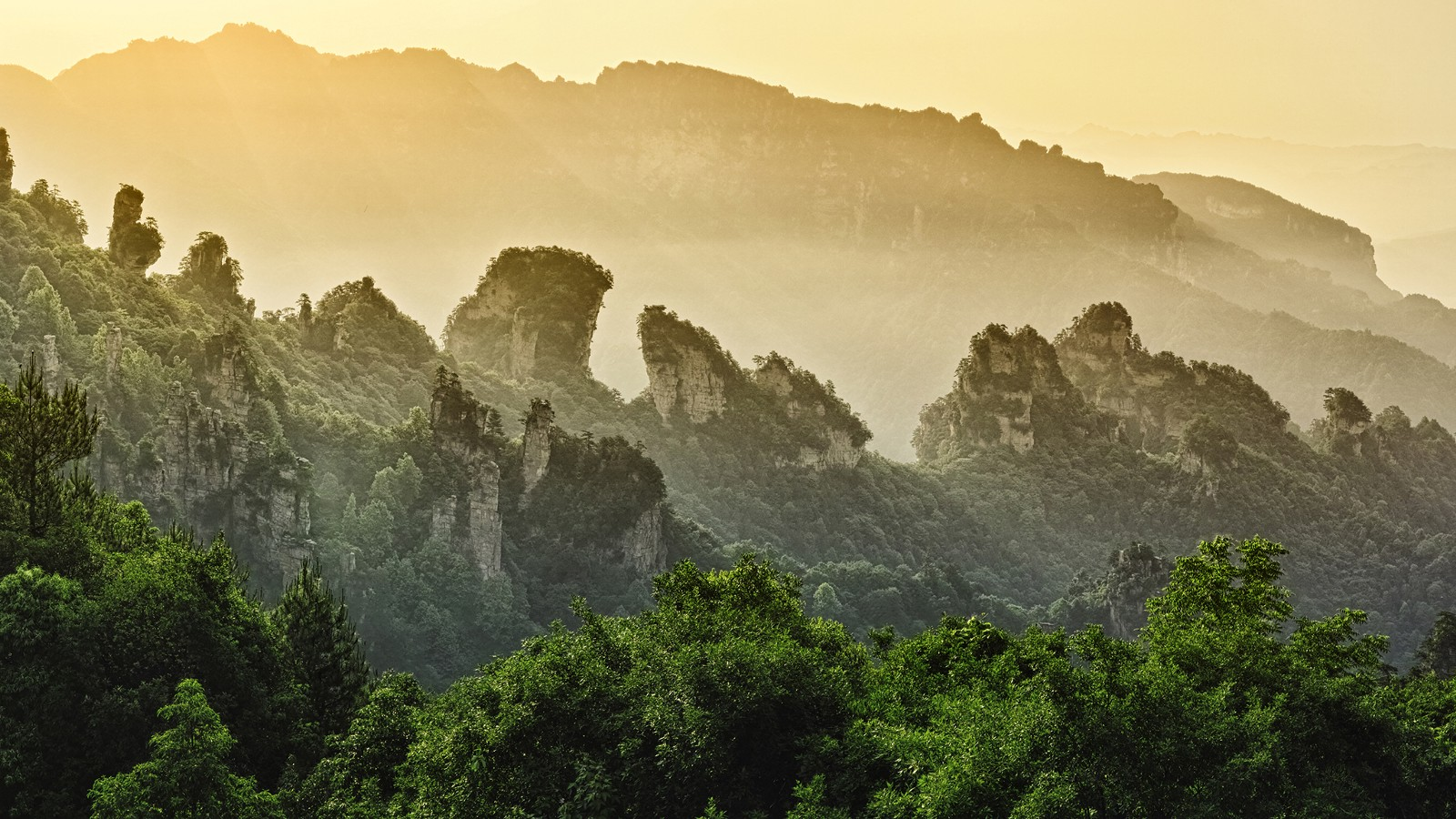 Sunrise at ZhangJiaJie National Park, China