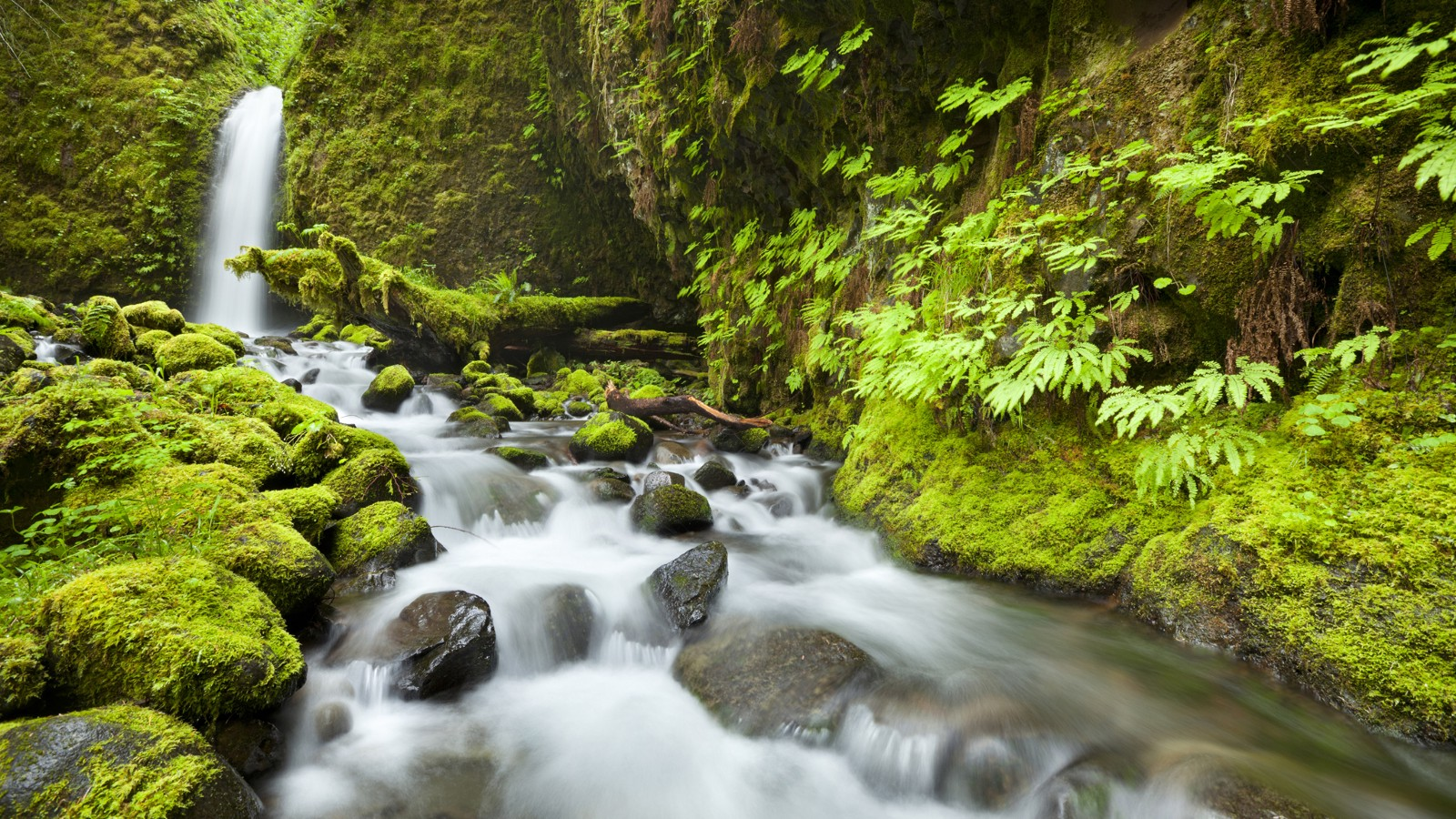 Remote waterfall in the backcountry of the Columbia River Gorge, Oregon