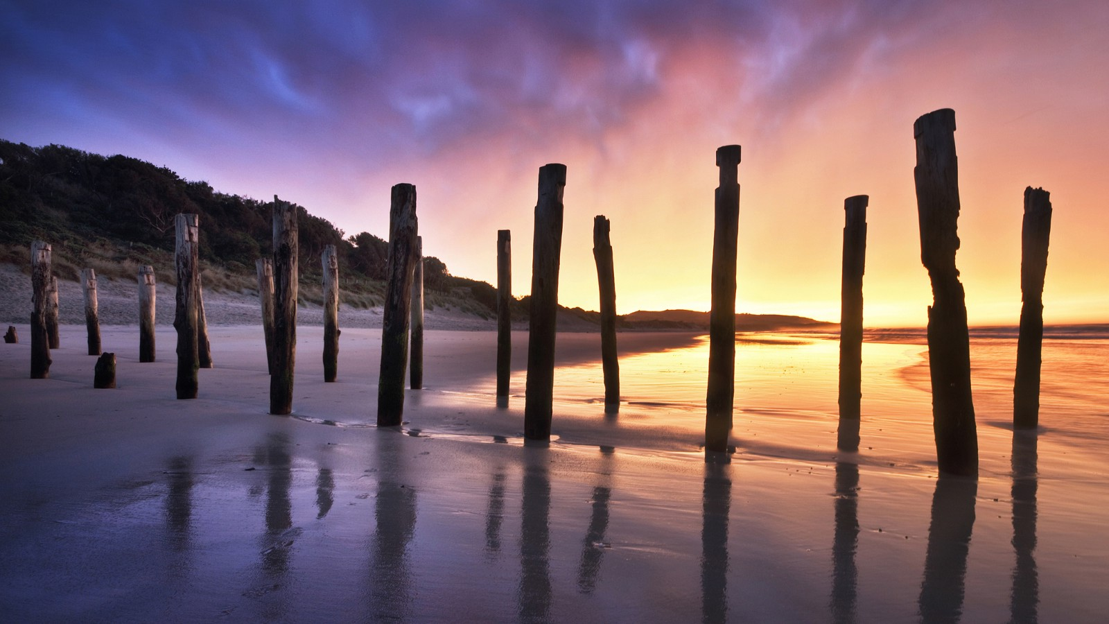 The Old Jetty Remains at St. Clair Beach in Dunedin, New Zealand
