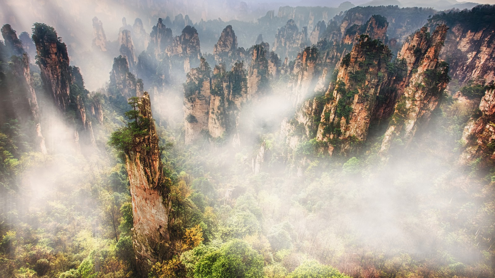 Rock formations in the Tianzishan area, Zhangjiajie National Park in Hunan province, China