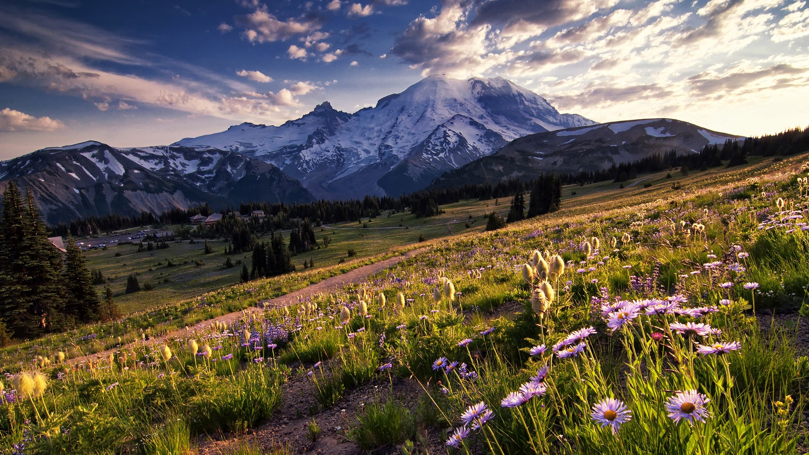 Sunset view at Mount Rainier National Park, Washington