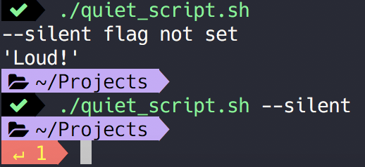 no output is printed when the silent flag is present when running the script