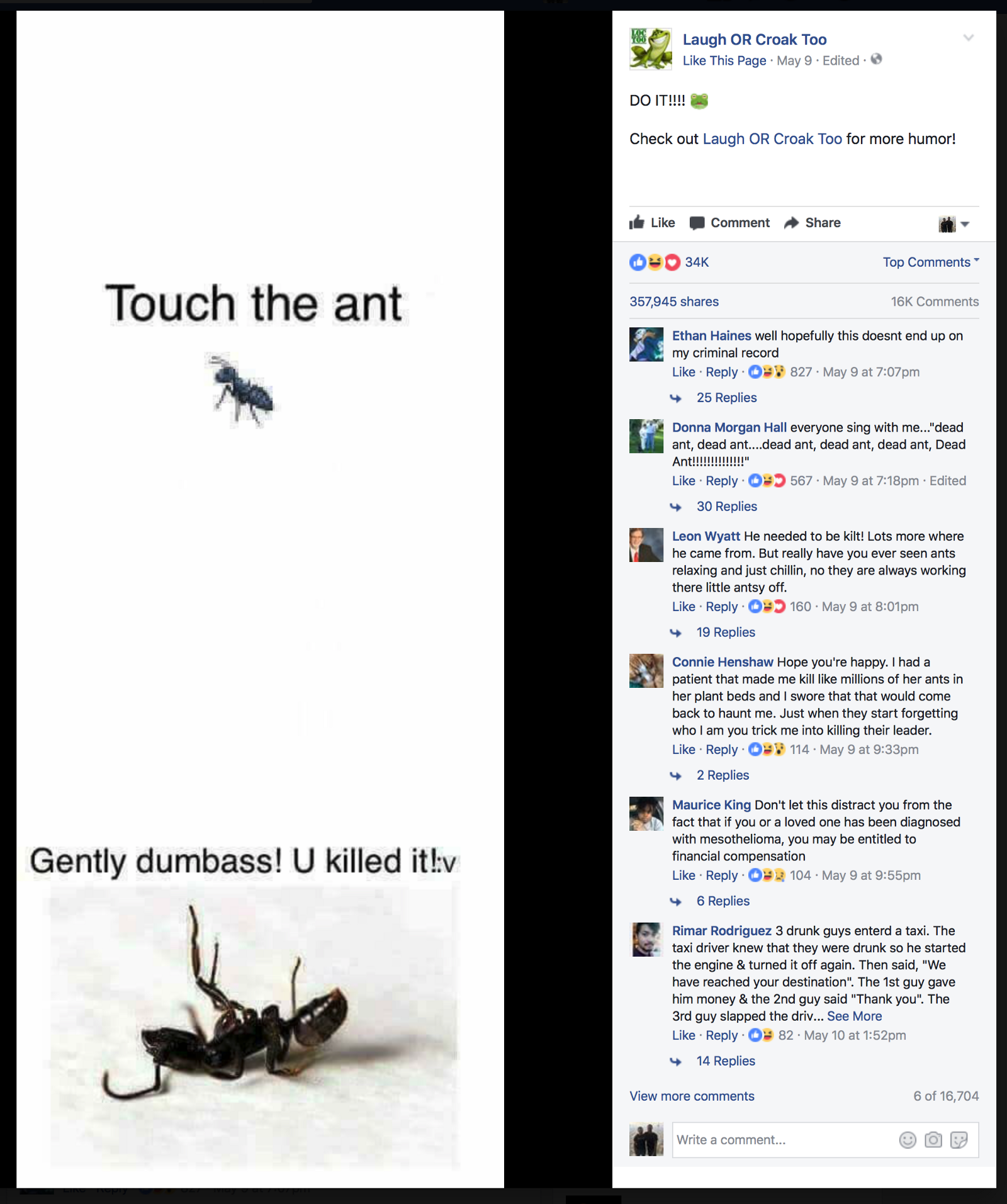 How The Touch The Ant Meme Became A New Facebook Art Form