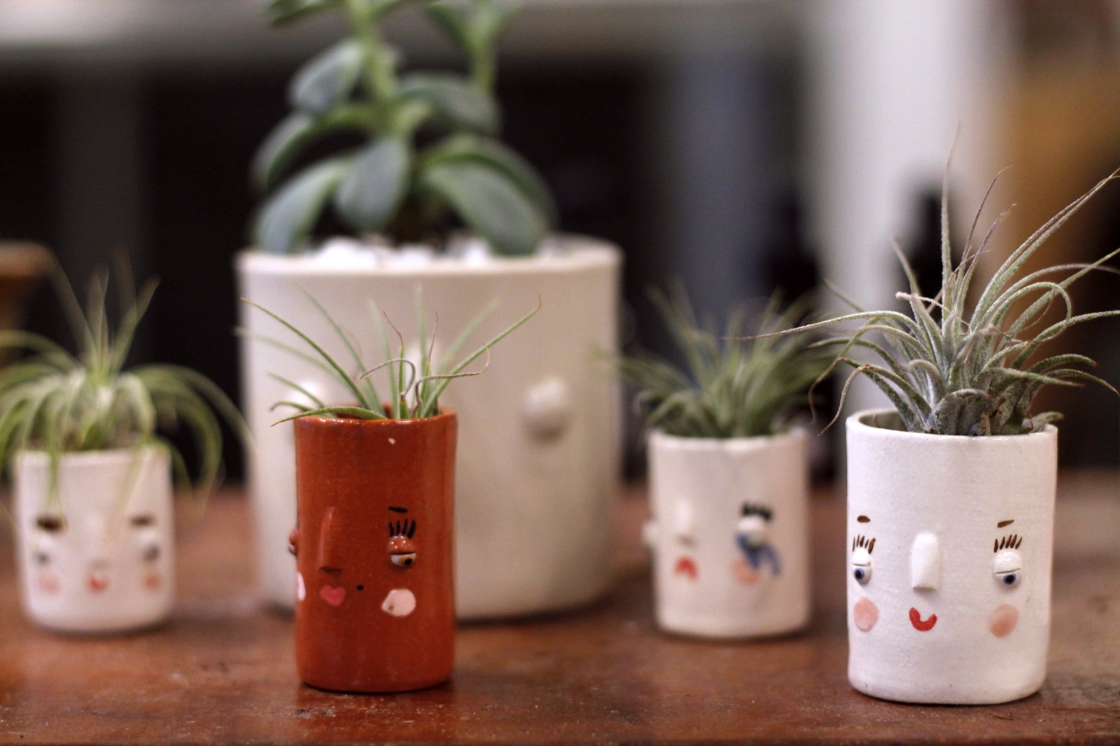 inspiring des moines home and garden show. The Art Terrarium s collection of pottery and home decor is anything but  basic From these tiny smiling pots to geometric hanging baskets you re bound Discovering the in downtown Des Moines