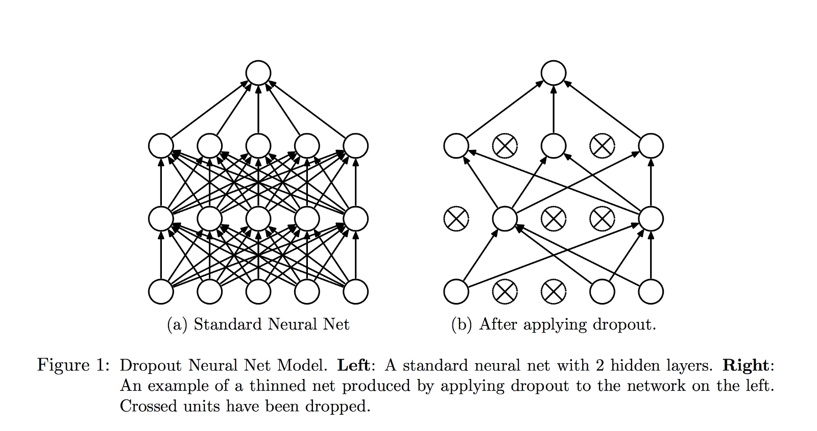 Is The Braess Paradox Related To Dropout In Neural Nets