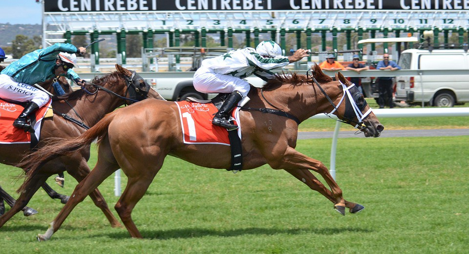 Horse Racing Systems How To Win When You Go Horse Racing