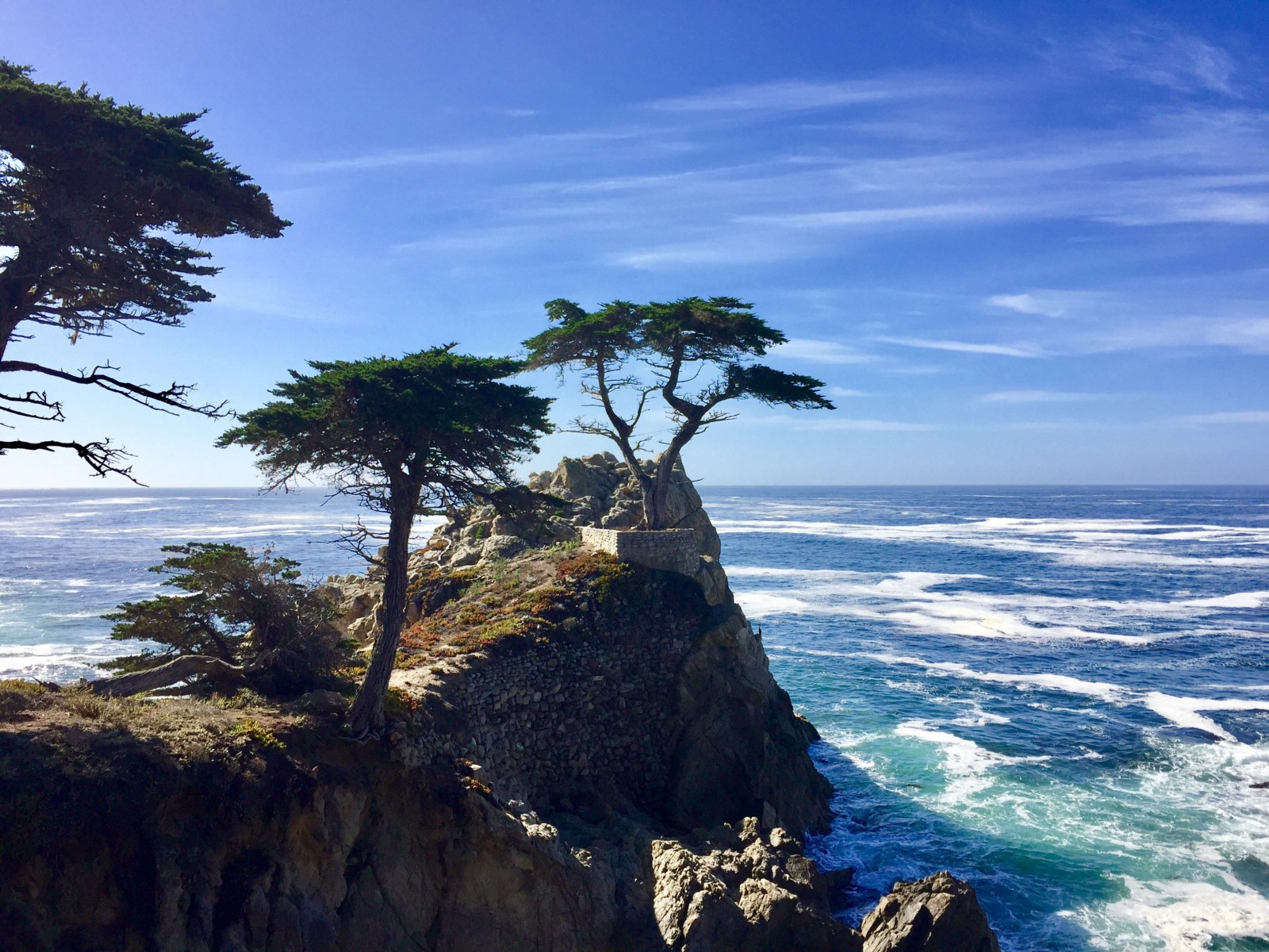 The Lone Cypress Featured In Logo For Pebble Beach Golf Links