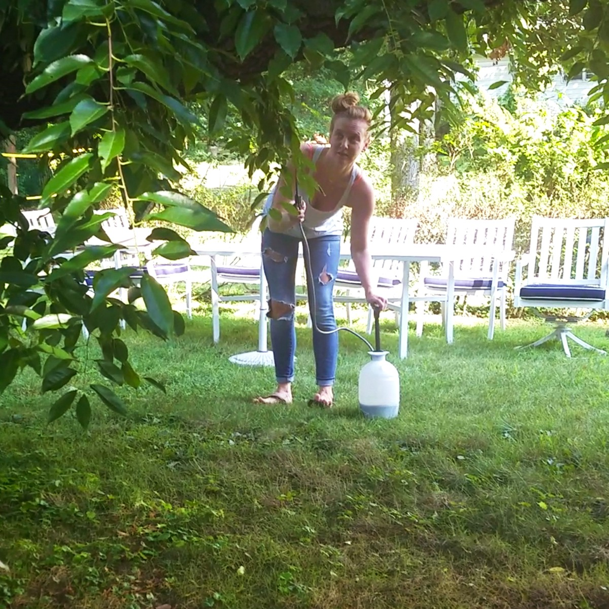 mosquito proof your backyard in time to host your own olympics