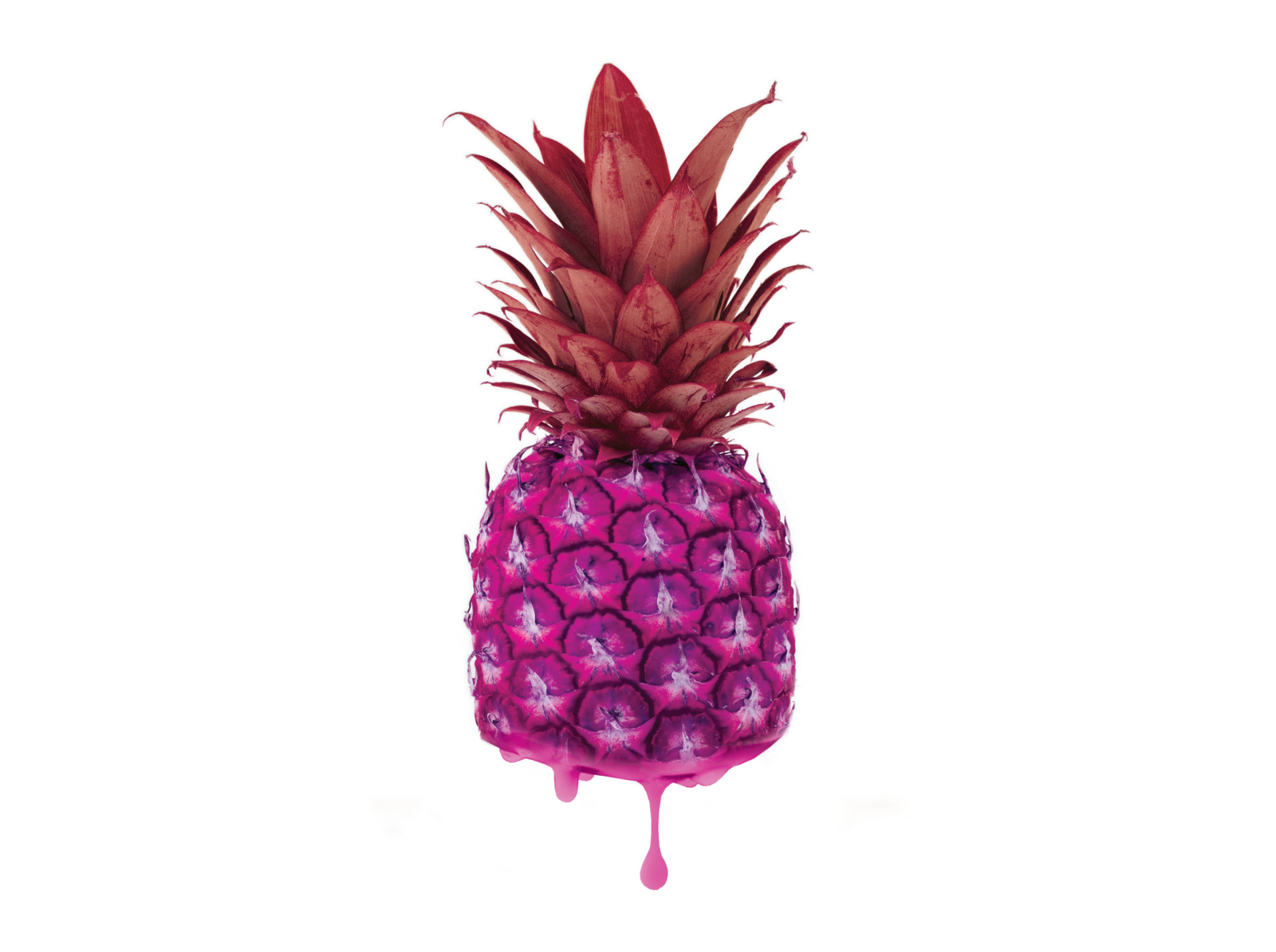 At the tail end of last year we were introduced to the pink pineapple, a beautiful yet totally odd creation. While they've been in development for over 12 years, only now are companies like Del.