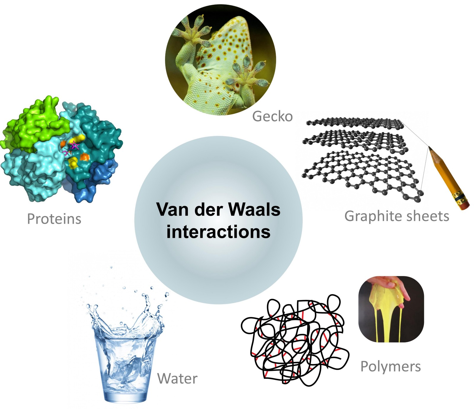 Solved: model water using the van der waals equation of state w.