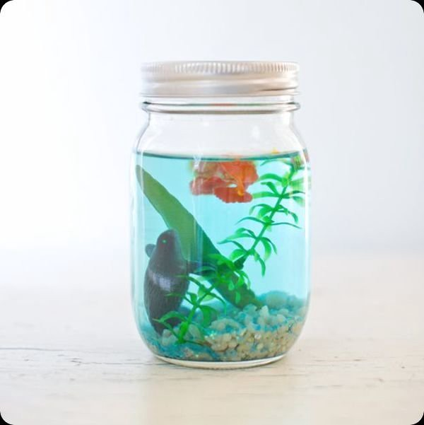 75 easy creative things to do with mason jars eve lynn for Cool things to do with mason jars
