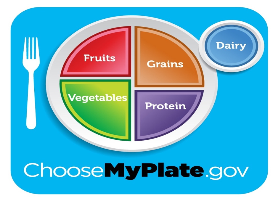 picture perfect nutrition in 5 minutes food plates to use