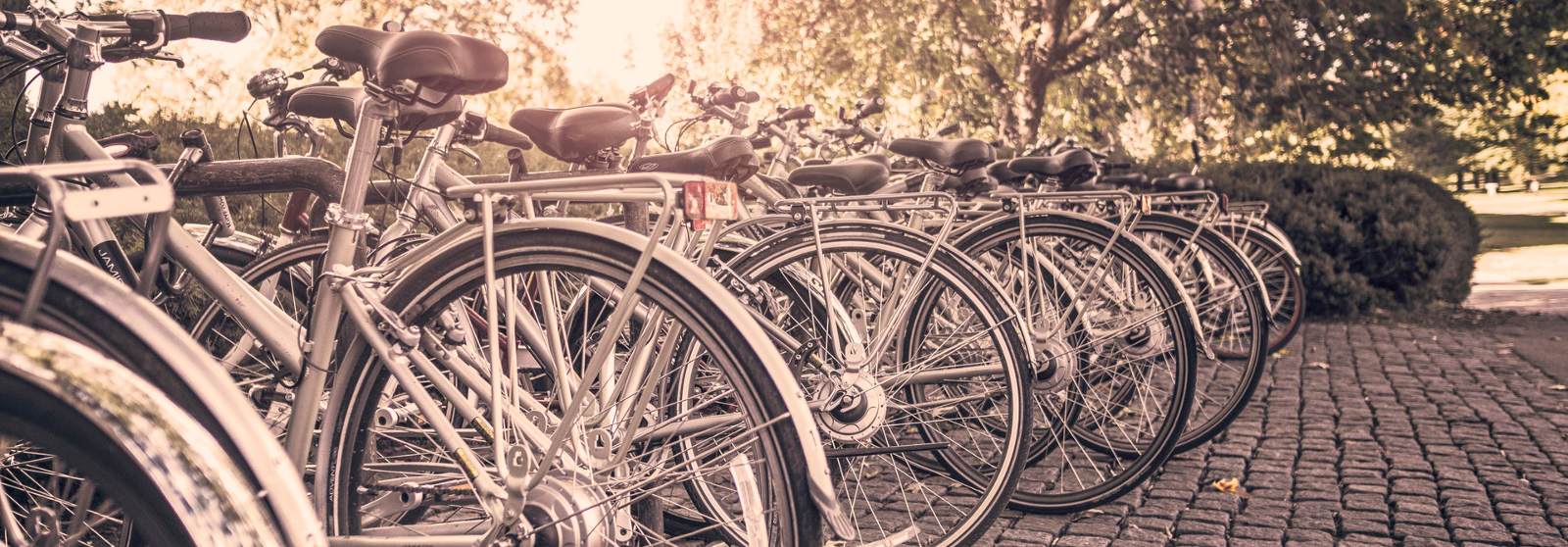 Bicycles don't work—neither do Agile, Design Thinking, Scrum, and all things