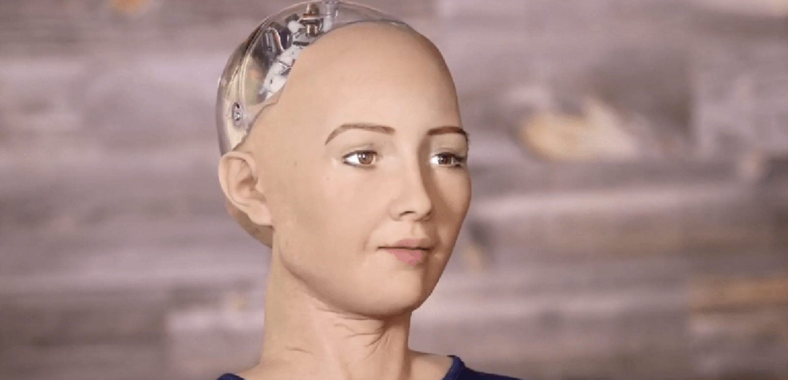 I M Sophia The Robot And I Heard You Were Talking Shit