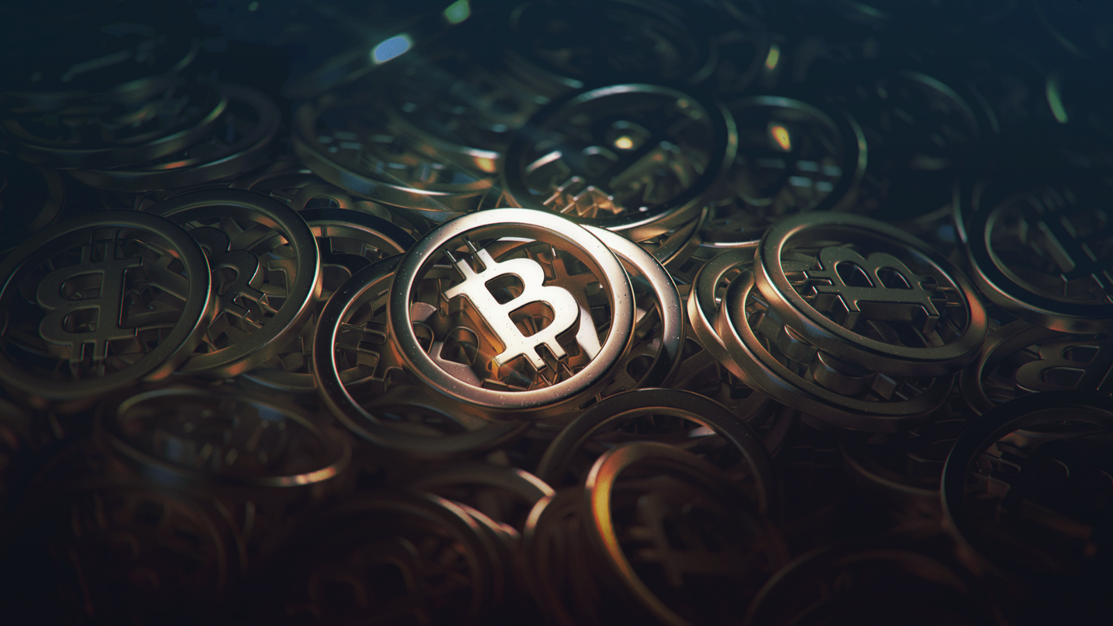 Bitcoin What To Expect From Novembers Hard Fork Hacker Noon