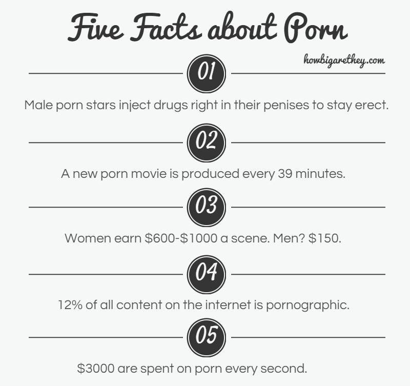 How much do porn models make picture 315