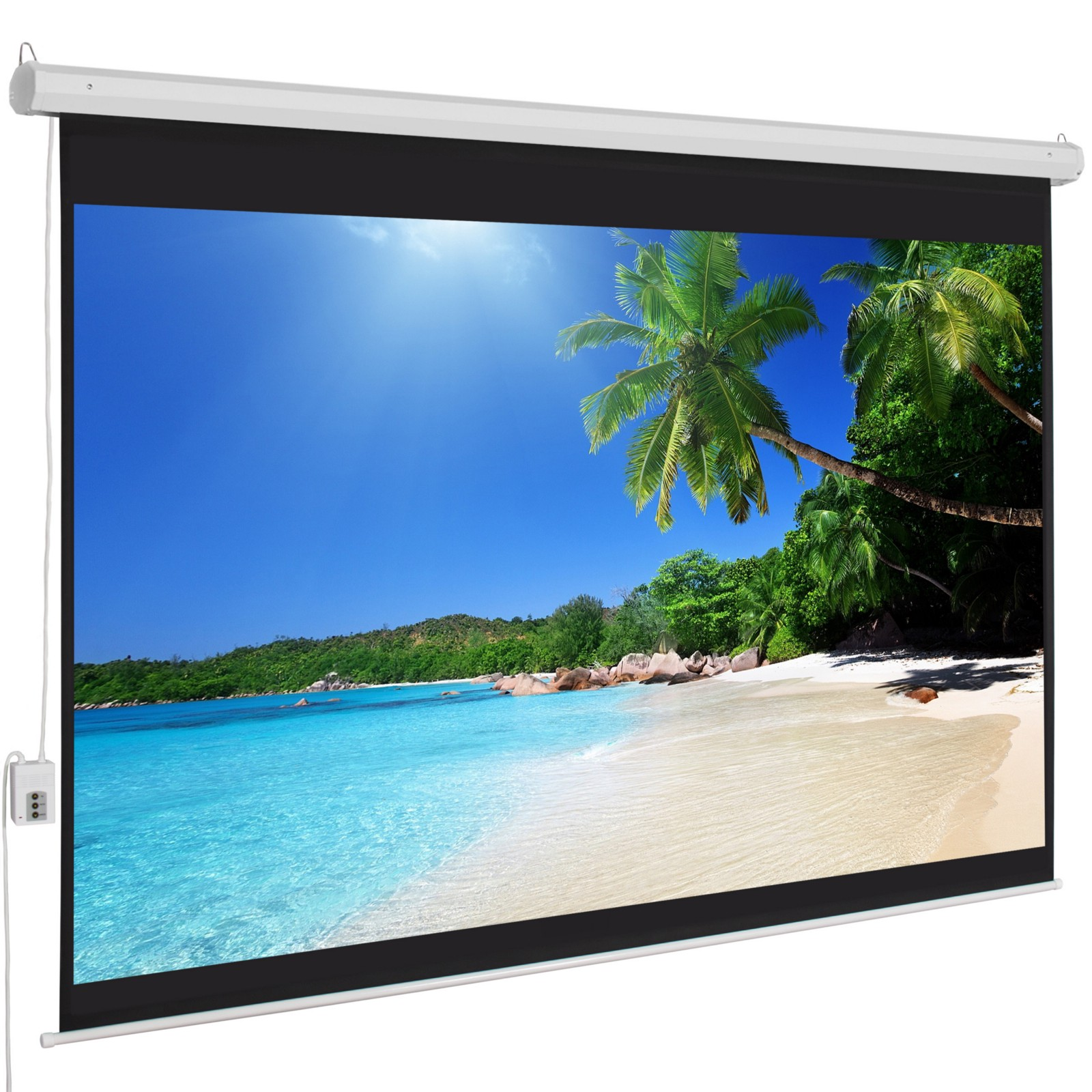 amplify your business with the right projector screen