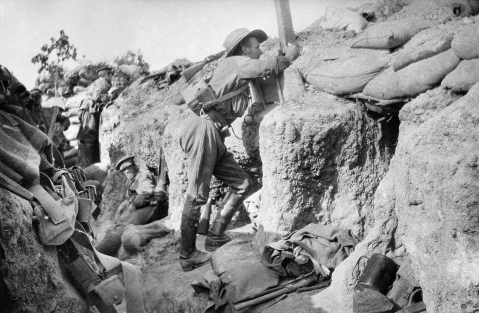battle gallipoli essays Battle of gallipoli and its effects to world war i name professor's name course date the gallipoli battle of 1915 was one of the most send me essays.