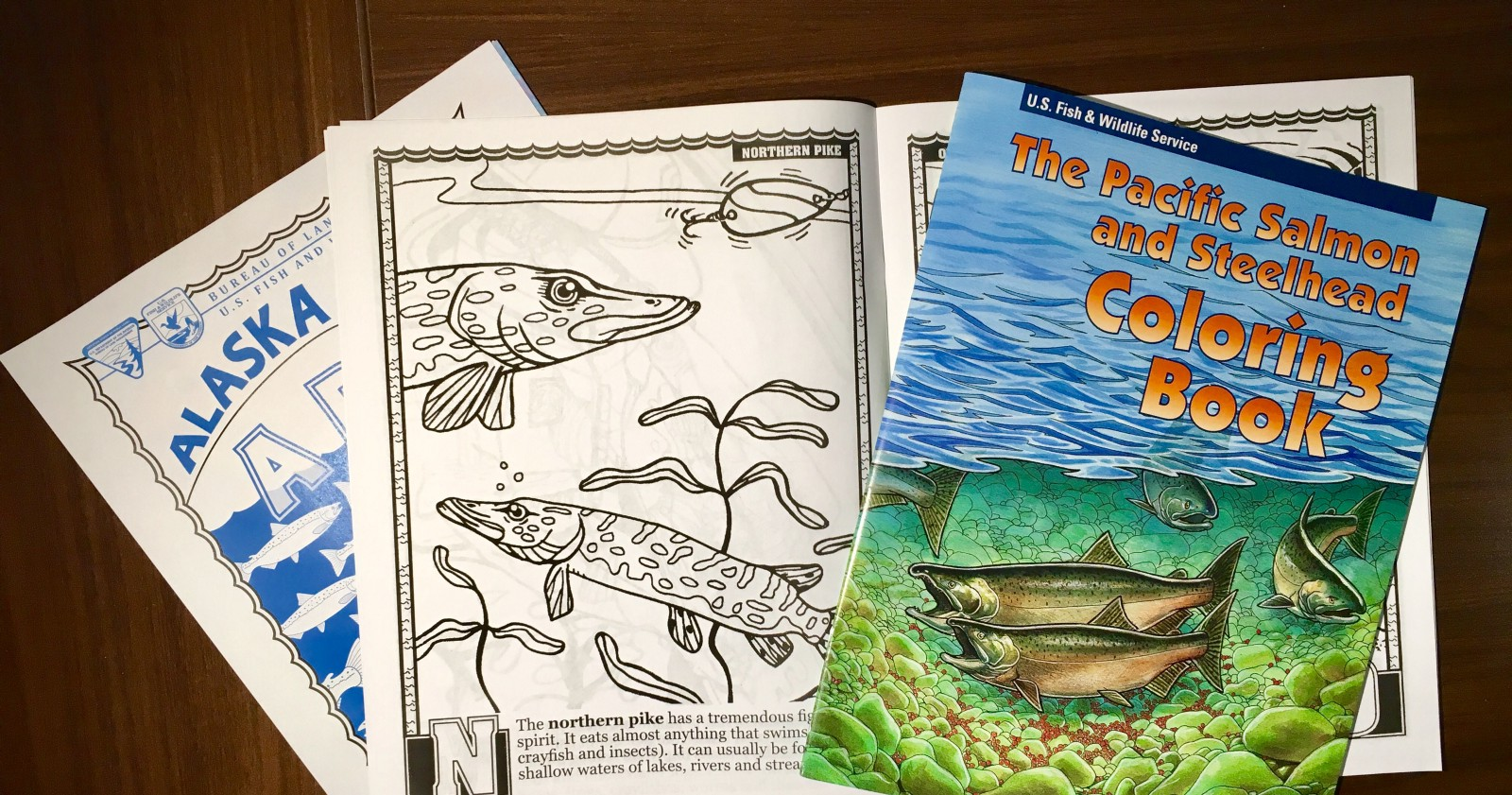 A Few Free Coloring Books Just For You
