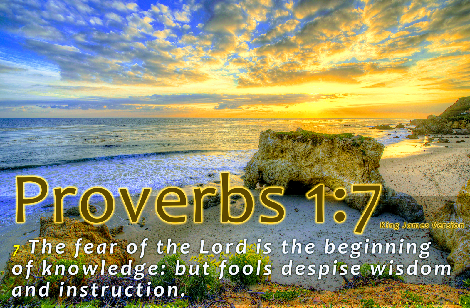 the fear of the lord is the beginning of knowledge but fools