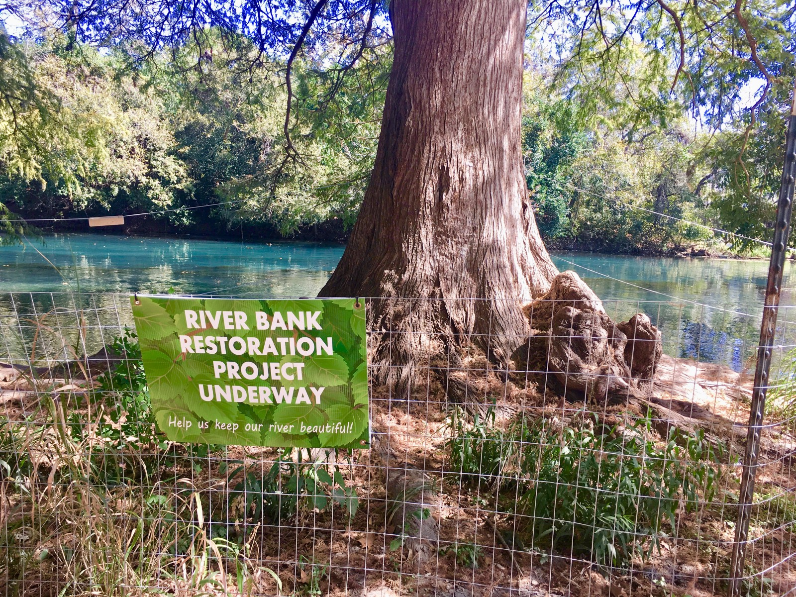 The Solution to The San Marcos River Pollution – Lauren Nichols – Medium