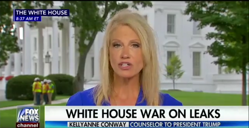 Kellyanne Conway: Paperwork Required to Serve in White House Demoralizes People