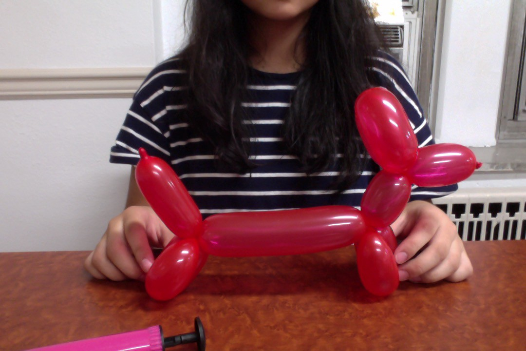 Time Based Instructions How To Make A Balloon Dog Helen Reynolds