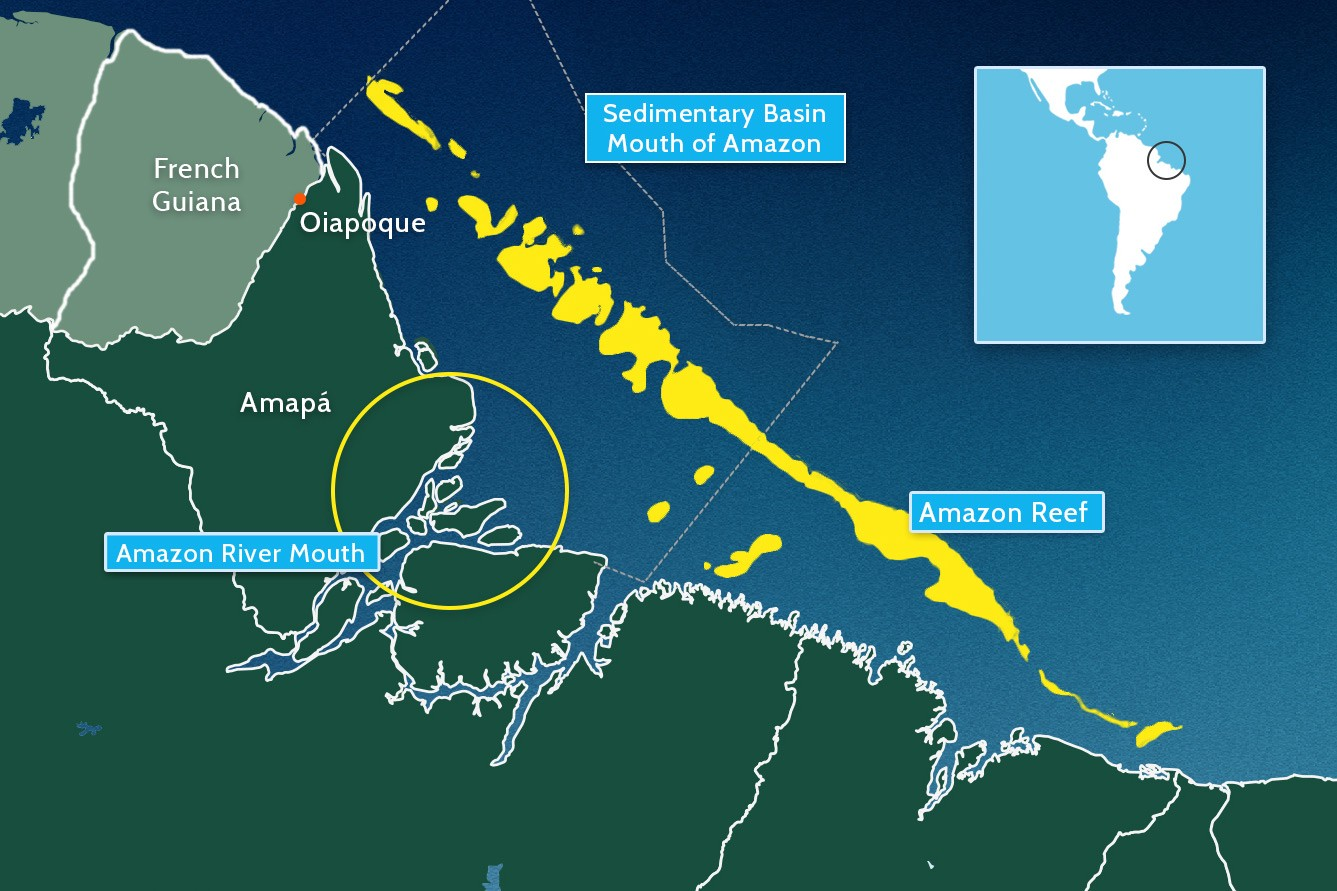The amazon reef is a fascinating puzzle heres what we know so far the amazon river mouth area is huge and its not all rainforest as it nears the sea the river fragments into a glorious mess of lakes channels and gumiabroncs Images
