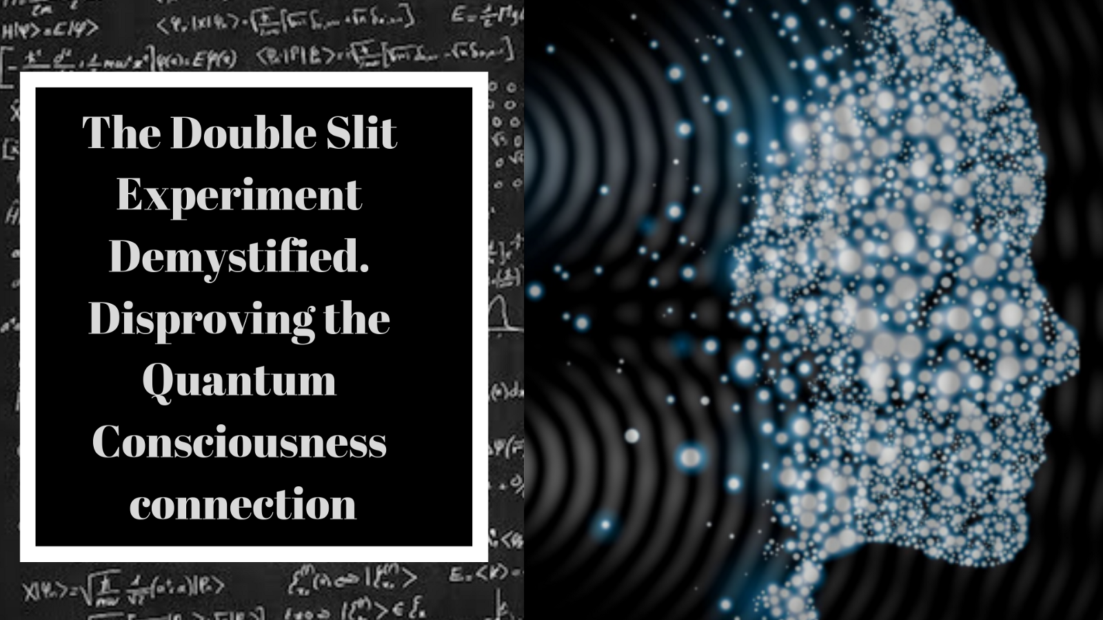 1457314e99 The Double Slit Experiment Demystified. Disproving the Quantum  Consciousness connection