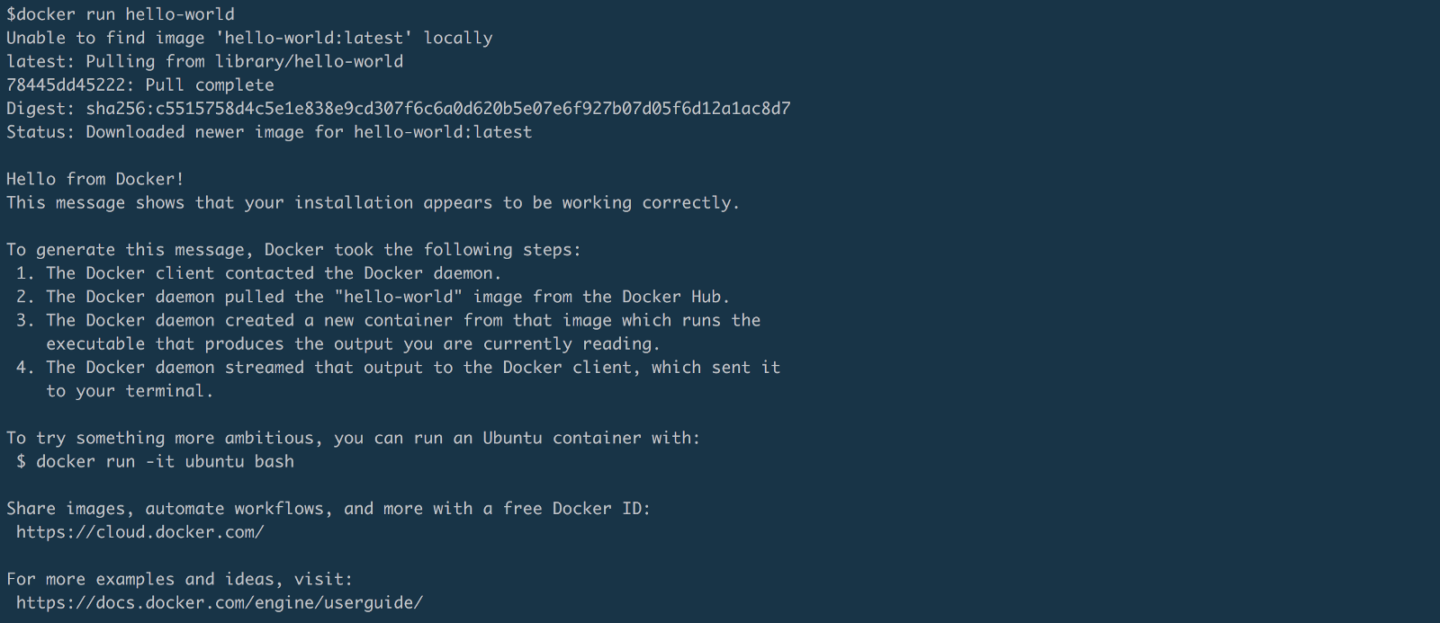 docker run shell in container