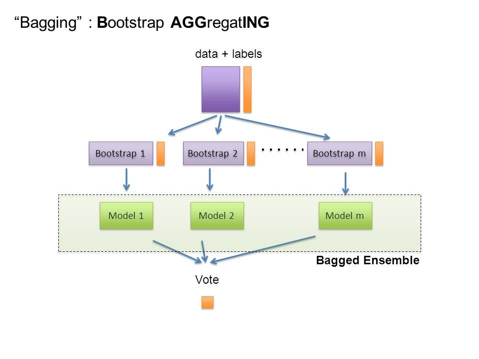 Easy Visualization Of What Bagging Does Each Model Is Individual And Voted Upon