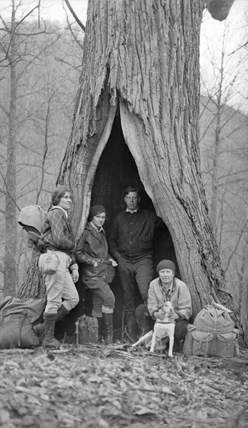 Giant Trees Of Appalachia And The People Who Lived In Them