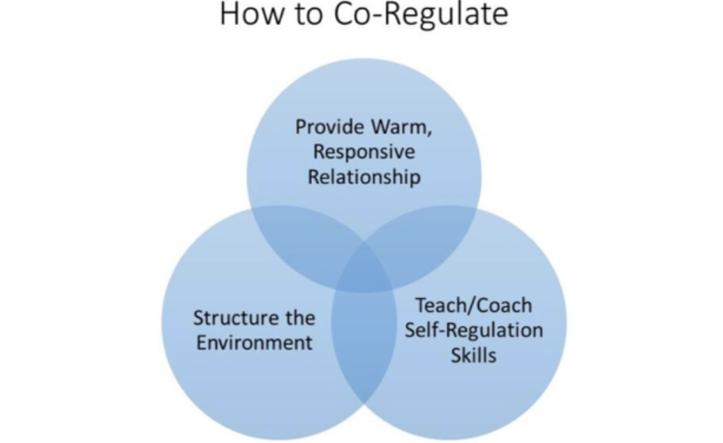 Self Regulation And Toxic Stress Report >> Co Regulation The Key To Building Sustainable Trauma Informed
