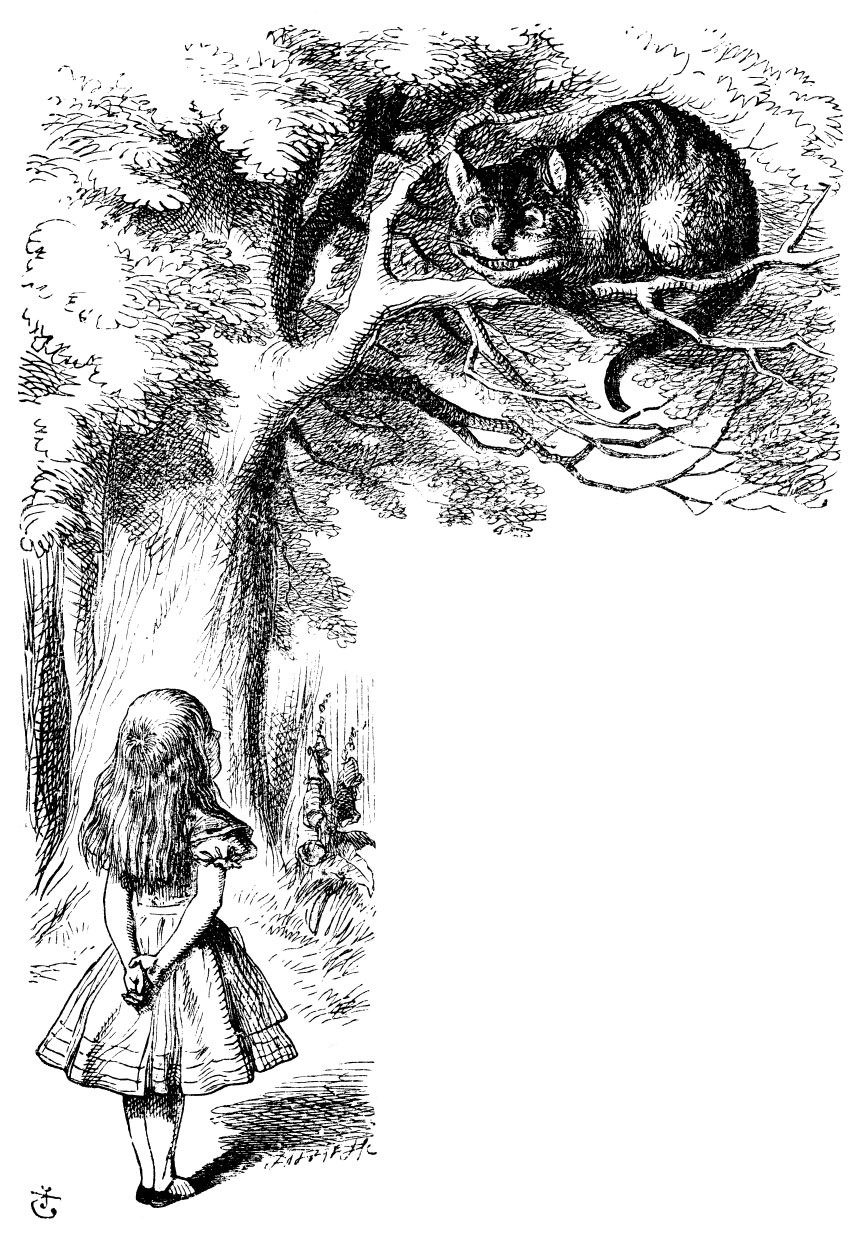 sir john tenniel u0027s classic illustrations of alice u0027s adventures in
