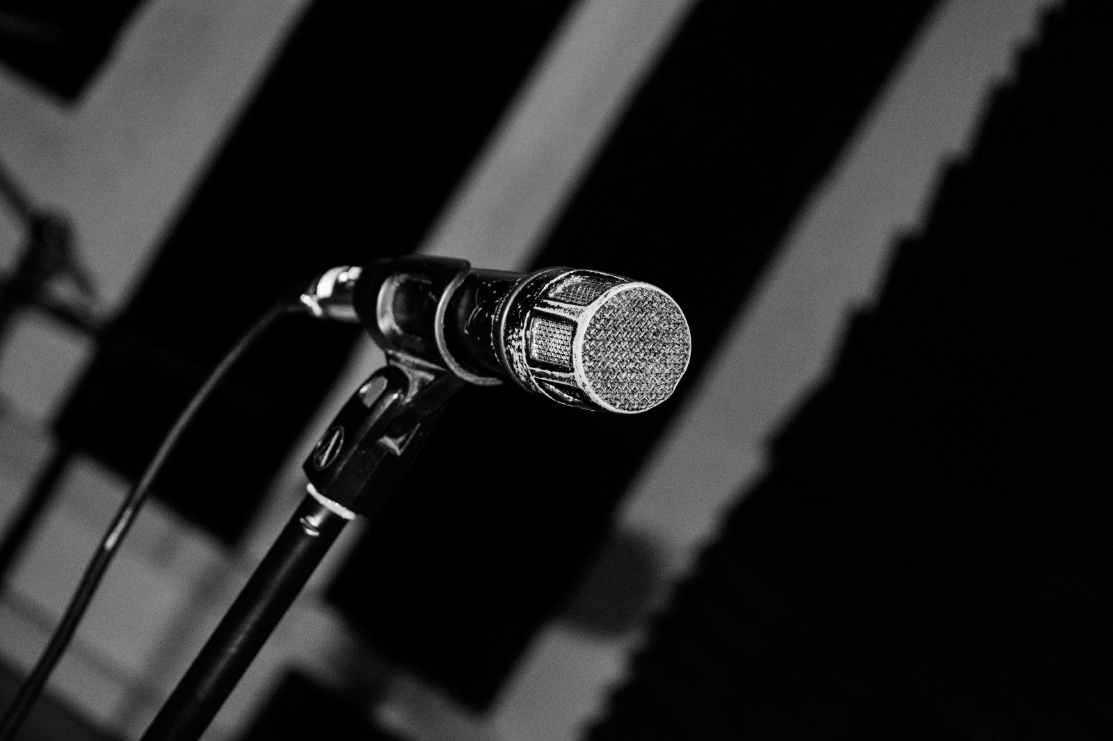 How to choose a good microphone for voice recording. Studio microphone for voice recording 53