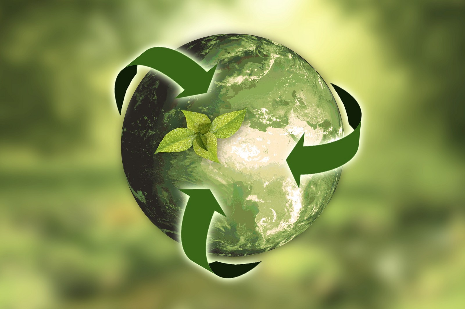 importance of environmental protection