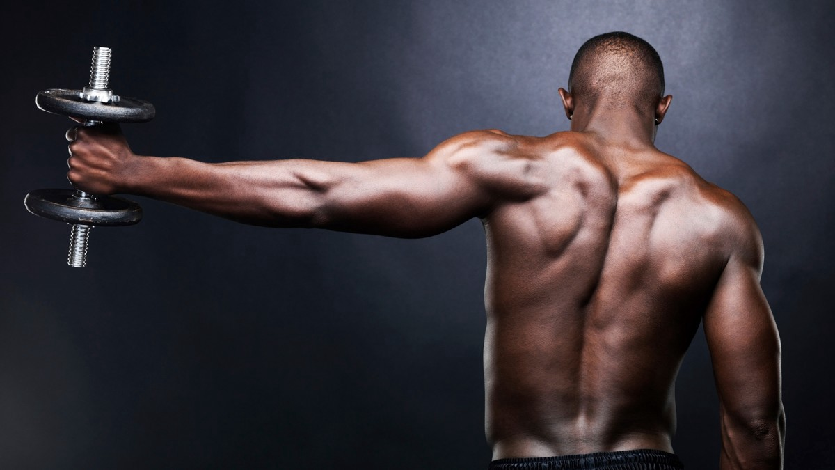 Muscle Building and fat-burning workout to Build Your Perfect Body : BODYBUILDING