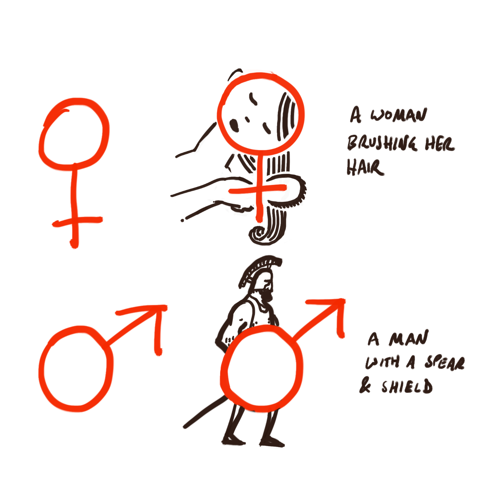A Visual Mnemonic For Remembering The Male And Female Symbols