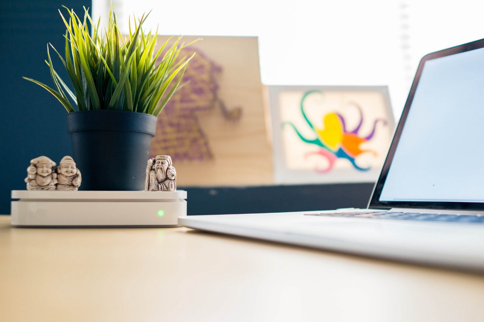 plants for office cubicle. Corporate Employee Makes Life Worth Living By Adding Plants To Her Cubicle For Office