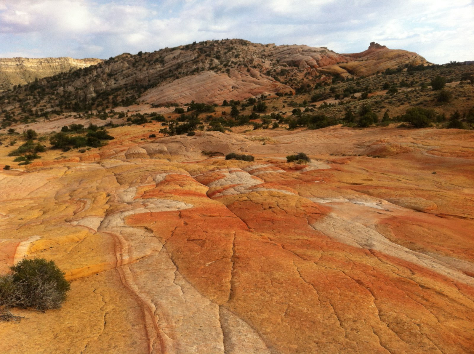 Battery life hacks all you need to know better humans i was standing atop yellow rock in the middle of nowhere utah looking out at the vast beautiful savannah like landscape andtotally lost buycottarizona Image collections