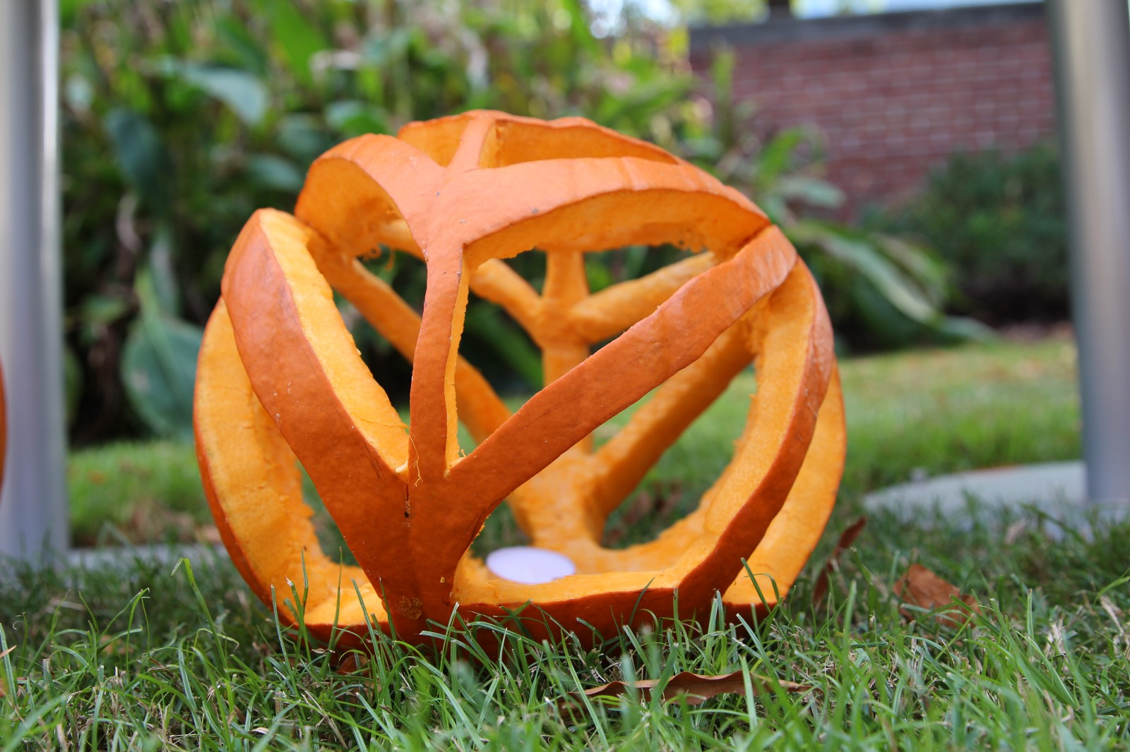 The Idea Was To Create Carved Pumpkins That Housed Tea Light Candles With A Dramatic Transformation Inspired By Some Design Theme