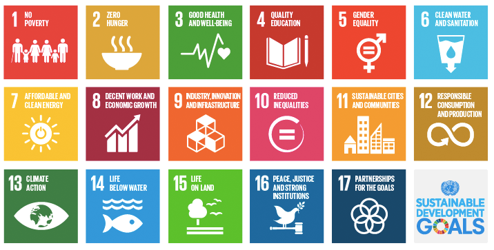 what particular sdg a brand aligns with would depend on the brands purpose and how closely it aligned with its business and social goals