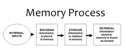Memory Flow Diagram