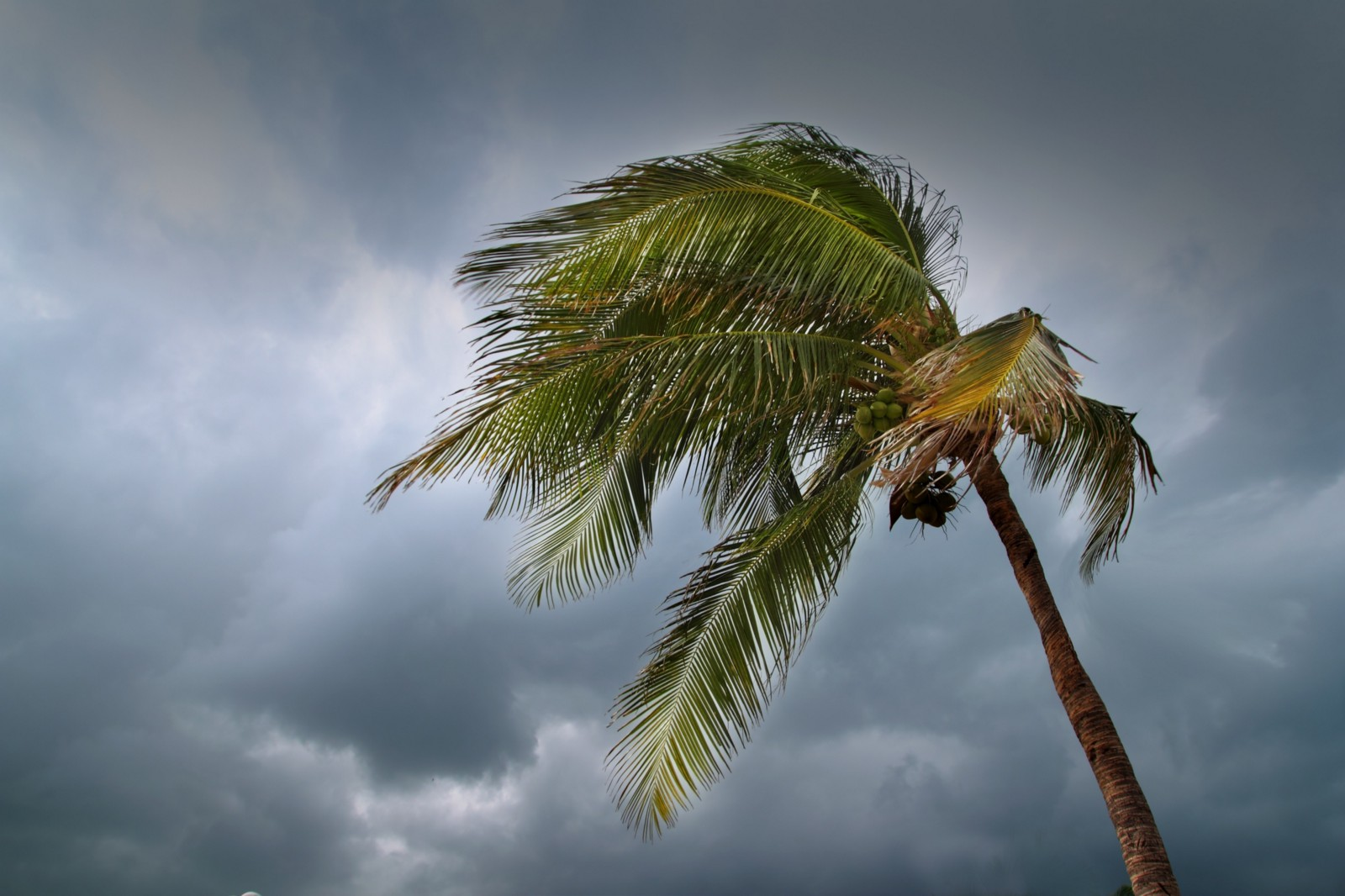 Ways to Get Prepared For a Natural Disaster