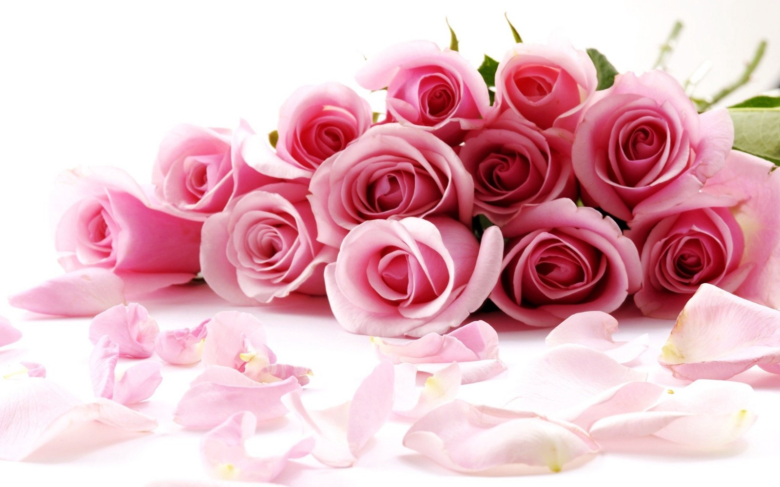 Send Beautiful Flowers To Make Loved Ones Day Special