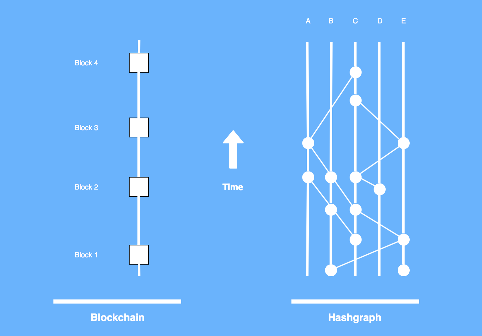 Blockchains vs. Hashgraphs