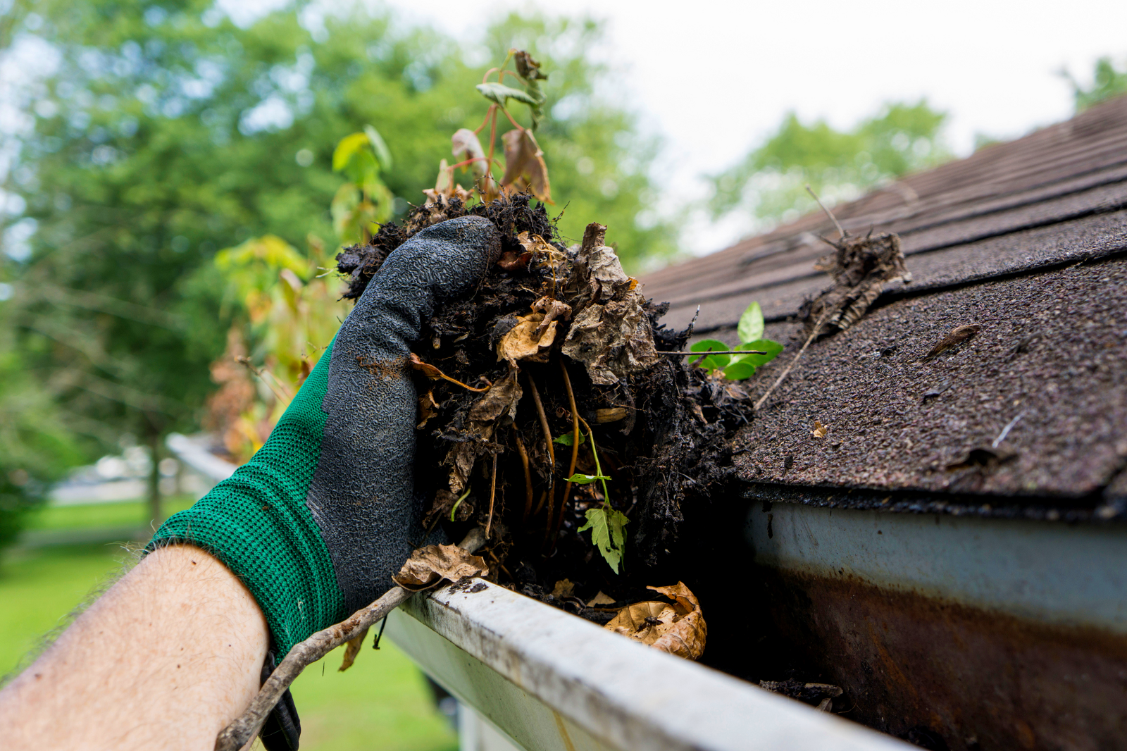 how to clean repair your gutters takl